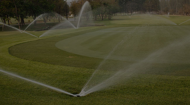 Irmo Irrigation